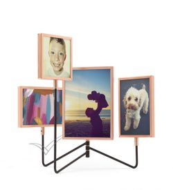 M6545 Photo Display