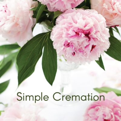 Package Simple Cremation